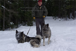 Jaegar and Kalia Elkhound Pair
