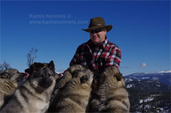 Kamia Kennels Elkhounds and Merv Carlson